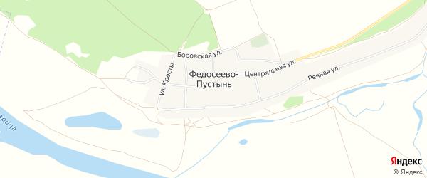 Карта села Федосеева-Пустынь в Рязанской области с улицами и номерами домов
