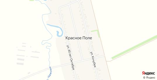 Улица СПТУ-50 в поселке Красное Поле в Курганинске с номерами домов на карте. Спутник и схема онлайн