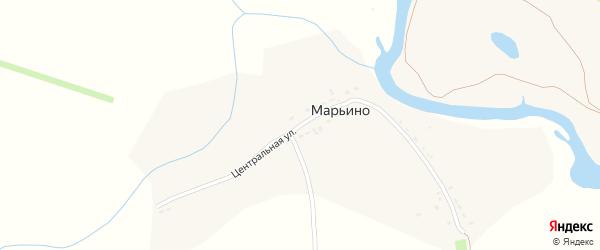 Центральная улица на карте деревни Марьино Тамбовской области с номерами домов
