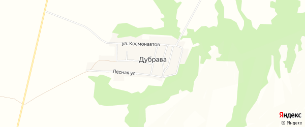 Карта поселка Дубравы в Воронежской области с улицами и номерами домов