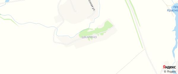 Карта деревни Шкарино в Тамбовской области с улицами и номерами домов