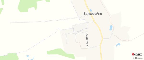 Карта деревни Волковойно в Владимирской области с улицами и номерами домов