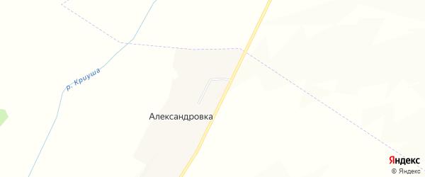 Карта хутора Александровки в Воронежской области с улицами и номерами домов