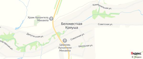 Карта села Беломестной Криуша в Тамбовской области с улицами и номерами домов