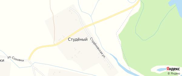 Студеновская улица на карте Студеного поселка Воронежской области с номерами домов