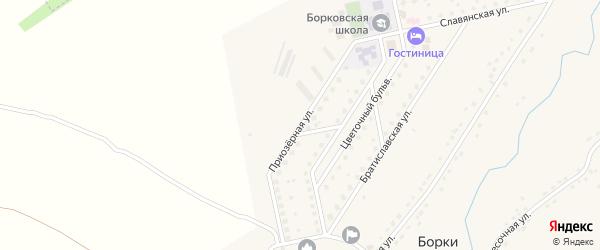 Приозерная улица на карте села Борки Рязанской области с номерами домов