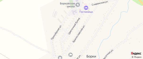Улица Цветочный бульвар на карте села Борки Рязанской области с номерами домов