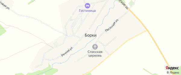 Карта села Борки в Рязанской области с улицами и номерами домов