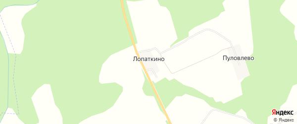 Карта деревни Лопаткино в Костромской области с улицами и номерами домов