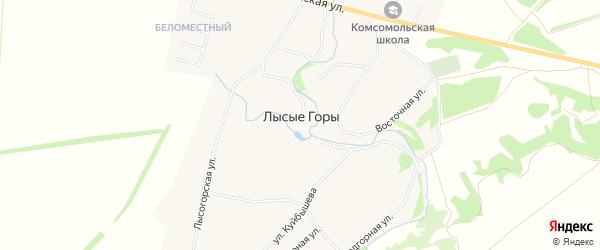 СНТ Защита на карте села Лысые Горов Тамбовской области с номерами домов