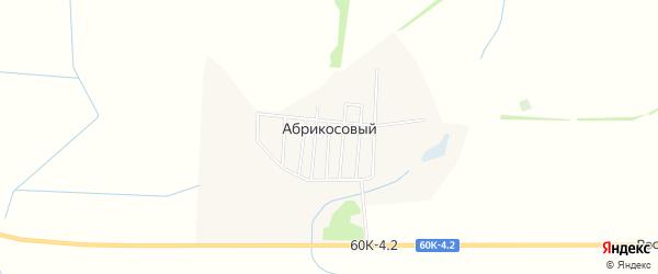 Карта Абрикосового поселка в Ростовской области с улицами и номерами домов