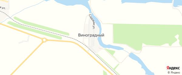 Карта Виноградного поселка в Ставропольском крае с улицами и номерами домов