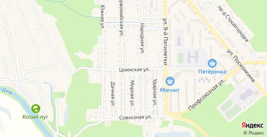 Цнинская улица в Котовске с номерами домов на карте. Спутник и схема онлайн