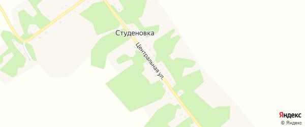 Центральная улица на карте деревни Студеновки Рязанской области с номерами домов