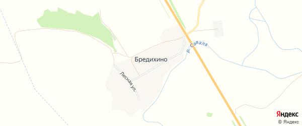 Карта деревни Бредихино в Тамбовской области с улицами и номерами домов