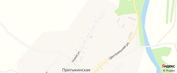 Новая улица на карте деревни Притыкинской (берега) Архангельской области с номерами домов