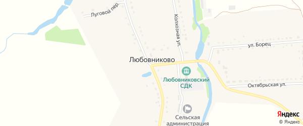 Центральный переулок на карте села Любовниково Рязанской области с номерами домов