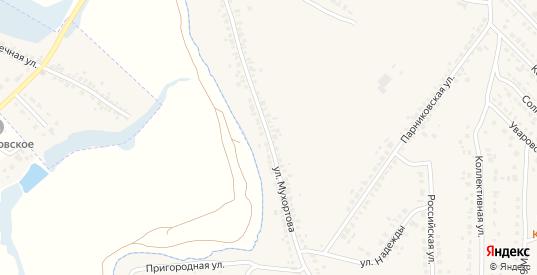 Улица Мухортова в Рассказово с номерами домов на карте. Спутник и схема онлайн