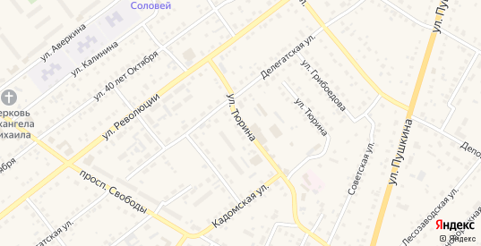 Улица Тюрина в Сасово с номерами домов на карте. Спутник и схема онлайн