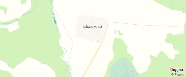 Карта деревни Шолохово в Ивановской области с улицами и номерами домов