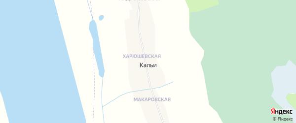 Карта деревни Кальи в Архангельской области с улицами и номерами домов
