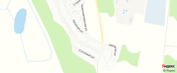 Хвойная улица на карте Борисоглебска с номерами домов