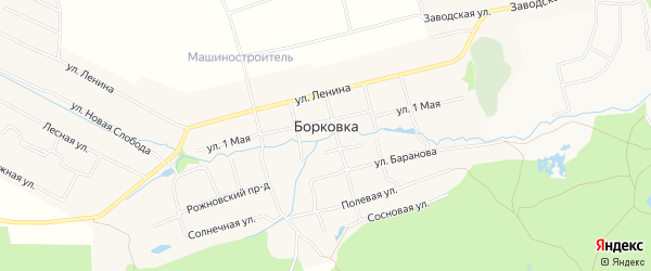 Карта села Борковки города Выксы в Нижегородской области с улицами и номерами домов
