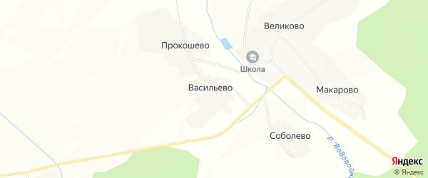Карта деревни Васильево в Костромской области с улицами и номерами домов