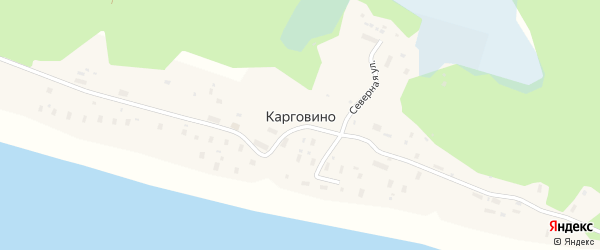 Центральная улица на карте поселка Карговино Архангельской области с номерами домов