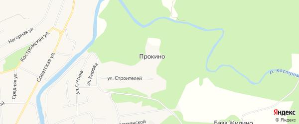 Карта деревни Прокино в Костромской области с улицами и номерами домов