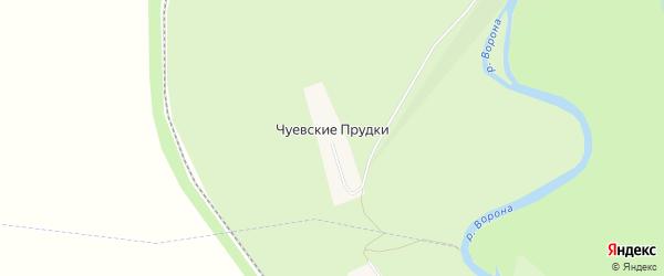 Карта села Чуевские Прудков в Тамбовской области с улицами и номерами домов