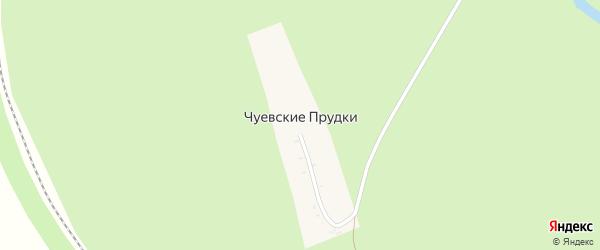 Центральная улица на карте села Чуевские Прудков Тамбовской области с номерами домов