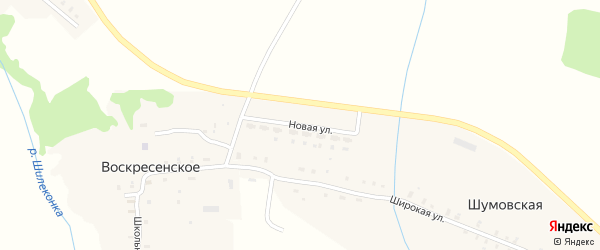 Новая улица на карте Шумовской деревни Ивановской области с номерами домов