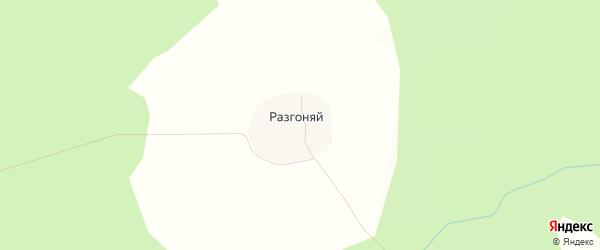 Карта деревни Разгоняя в Костромской области с улицами и номерами домов