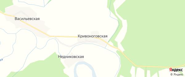 Карта Кривоноговской деревни в Архангельской области с улицами и номерами домов