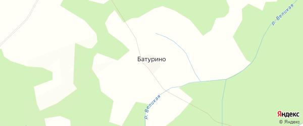 Карта деревни Батурино в Костромской области с улицами и номерами домов
