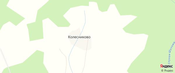Карта деревни Колесниково в Костромской области с улицами и номерами домов