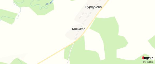 Карта деревни Княжево в Костромской области с улицами и номерами домов