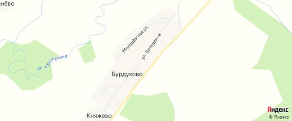 Карта деревни Бурдуково в Костромской области с улицами и номерами домов