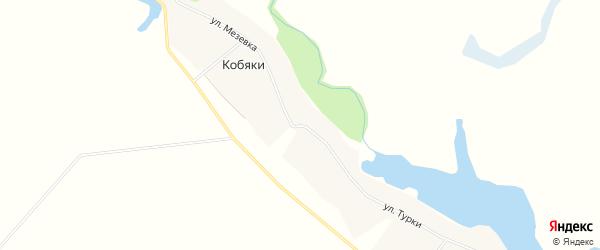 Карта села Кобяки в Тамбовской области с улицами и номерами домов
