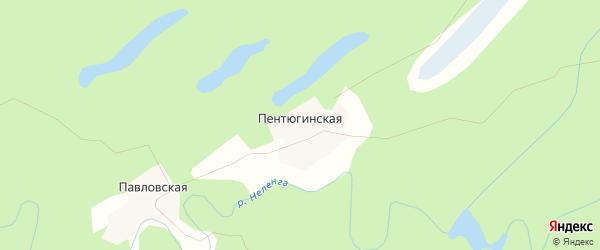 Карта Пентюгинской деревни в Архангельской области с улицами и номерами домов
