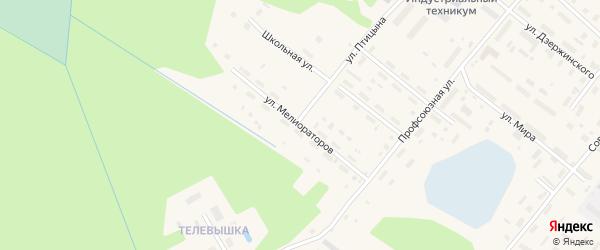 Улица Мелиораторов на карте поселка Березника Архангельской области с номерами домов