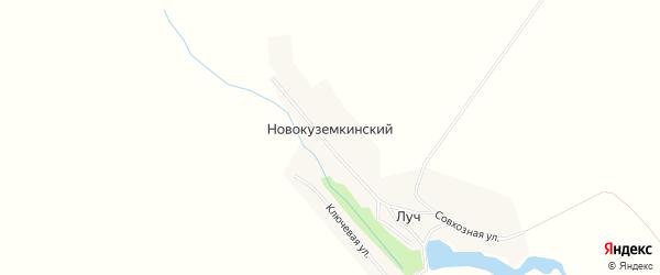 Карта Новокуземкинского поселка в Пензенской области с улицами и номерами домов