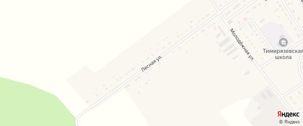 Лесная улица на карте села Тимирязево Пензенской области с номерами домов