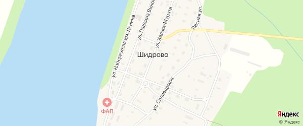 Улица Павлина-Виноградова на карте поселка Шидрово Архангельской области с номерами домов