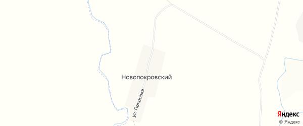 Карта Новопокровского поселка в Пензенской области с улицами и номерами домов