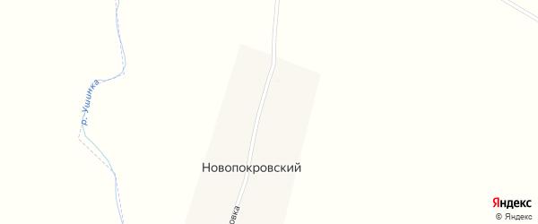 Улица Покровка на карте Новопокровского поселка Пензенской области с номерами домов