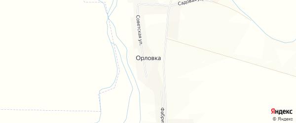 Карта деревни Орловки в Пензенской области с улицами и номерами домов