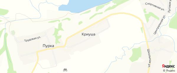Карта деревни Криуши в Нижегородской области с улицами и номерами домов