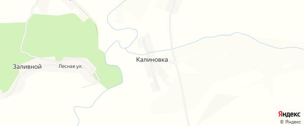 Карта поселка Калиновки в Пензенской области с улицами и номерами домов
